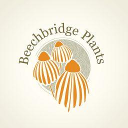 Beechbridge-Plants-logo